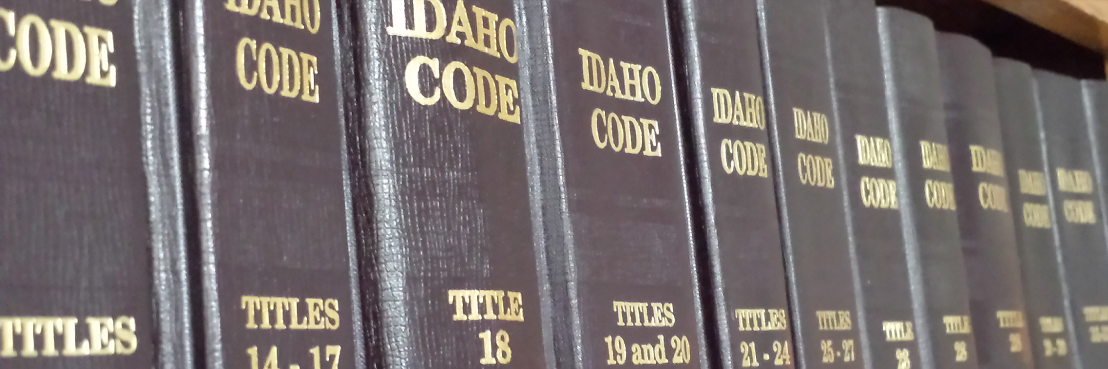 Idaho Business Law, Employment Law, and Labor Law Attorneys